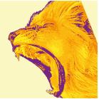 lionshead-01